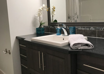 Deluxe Vanity with Stanza Sink and Zarina Faucet
